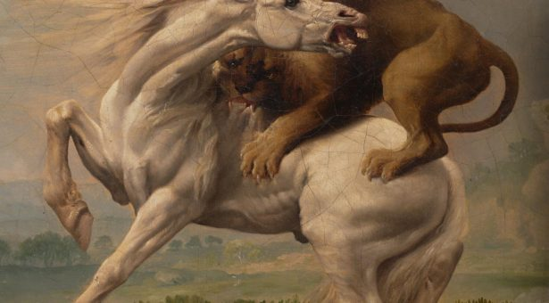 George STUBBS A lion attacking a horse (c. 1765) (detail) oil on canvas 69.0 x 100.1 cm National Gallery of Victoria, Melbourne Felton Bequest, 1949 2052-4