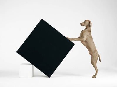 William Wegman American born 1943 Constructivism 2014 pigment print Collection of the artist