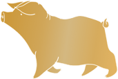 Lunar New Year pig